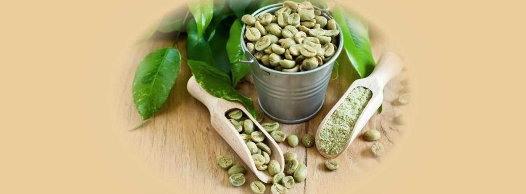 Green Coffee Bean Extract Uses and Side Effects