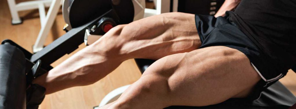 Top 5 Exercises to Build Monstrous Legs!
