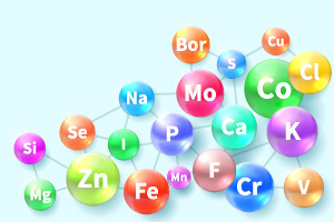 Minerals: Their Functions and Sources