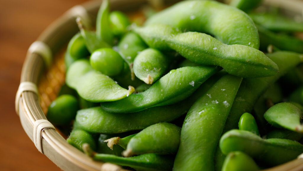 vegetable protein-rich foods