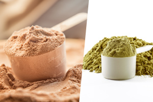 Types of Proteins — Protein Whey Vs Plant Protein, Understanding Which Is Better